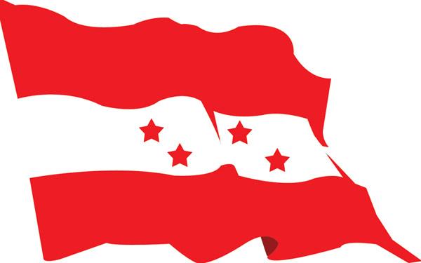 Congress-flag_20100916083452